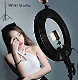 TrendMax Pro 18 Inches Big LED Ring Light for Camera, Phone tiktok YouTube Video Shooting and Makeup, Stand and Light (Pro Version)