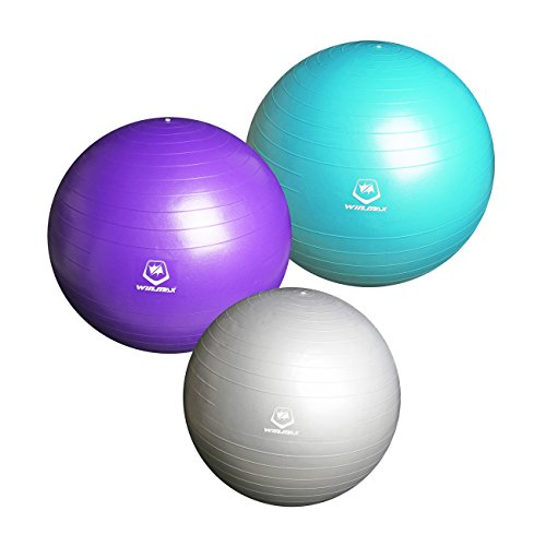 winmax-exercise-gym-yoga-swiss-ball-75cm-pvc-blue-fitness-pregancy-birthing-anti-burst-exercise-ball