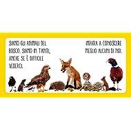 Animali-della-foresta-Libro-sonoro