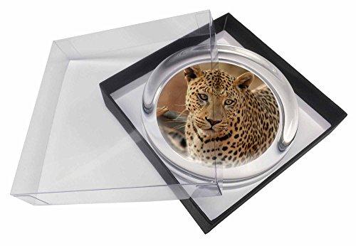 Leopard Glas Briefbeschwerer in Geschenkbox Weihnachtsgeschenk (Gläser Leopard Print)