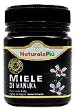 Miel de Manuka 500+ MGO 250 gr. Produit en Nouvelle-Zélande. Actif et brut, 100 % pur et naturel. Méthylglyoxal testé.