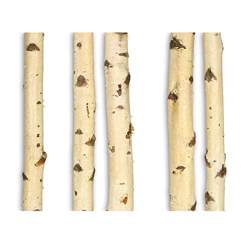 Massivholz Raumteiler (GREENHAUS Birkenstamm 140 cm Birke Massivholz aus Deutschland Holzstamm Birkenholz Stamm Birken Stamm Baumstamm Deko)