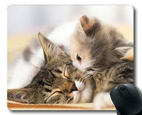 Gaming Mouse Pad, Baby Tier Kätzchen Animal Cute Kiss Band Liebe Cat Mauspad, Mauspad für Computer ()