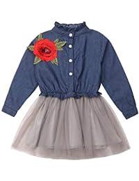 Mitlfuny Verano Niñas Bebé Princesa Vestidos Manga Larga Bautizo Vestido de  Vaquero Rosa Bordado Tul Cosiendo c3e83ee83419