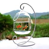 Eillybird Hängendes Glasaquarium Fischglas Aquarium Blumen-Pflanzenvase Innovative Klare 15cm Höhe, 23 cm / 9,06 Zoll Höhe Gestell Fishbowls