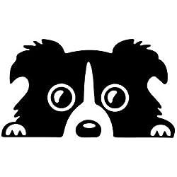 Blanco Alamor 14X8Cm Coche Encantadora Mascota Perro Pegatina Divertido Calcoman/ía Auto Parachoques Ventana Cuerpo Calcoman/ía