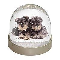 Advanta Group Miniature Schnauzer Dogs Snow Globe, Multi-Colour, 9.2 x 9.2 x 8 cm