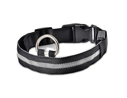 -Haustier-Hundehalsband, Nacht-Sicherheits-Blitzen-Glühen im dunklen Hundeleine, Hunde Luminous Fluorescent Halsbänder Pet Supplies [L Kragen Schwarz] ()