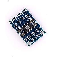 Ballylelly Mini Módulo Amplificador Digital TPA3116D2 XH-M562 Tablero del Amplificador de Canal Dual