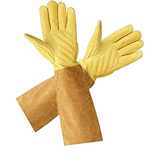 Rose Pruning Gloves, Professional Pruning Thornproof Gardening Gloves with Long Gauntlet to Protect Your Arms Until the Elbow.Yellow Brown ST102 (Medium 7.5