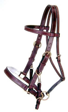 Tough 1 Australian Outrider Collection Leather Bridle/Halter, Brown by Tough 1