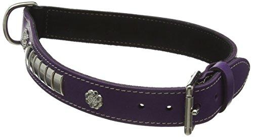 BBD Pet Products Leder Staff Halsband, 22-25, Violett