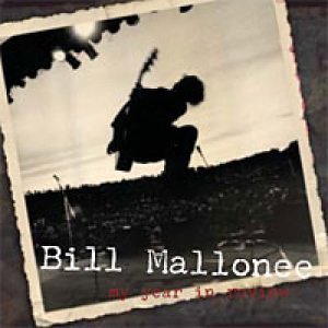 My Year In Review (US Import) (Mallonee Bill)