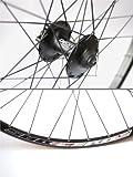 "Momentum Boulder SZ/Deore 26"" Disc Wheel: Front"
