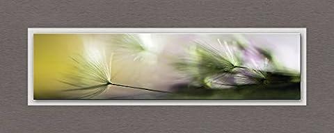 Eurographics TLG-MZ1001 In the Morning Glasbild auf Metall, Float Glas, Aluminiumverbundmaterial, bunt, 127 x 52 x 3,5