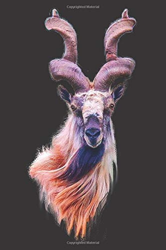 Markhor Goat: Blank Lined Notebook, Journal or Diary