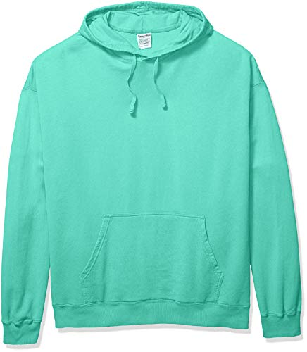 Hanes Herren Men's ComfortWash Garment Dyed Fleece Hoodie Sweatshirt Kapuzenpulli, Mint, X-Groß Comfortblend Fleece Pullover Hoodie
