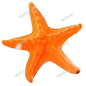 Magic Grow-in-Water Expandable Starfish Toy 6 Times Large FTY-15039