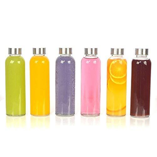 Glas Getränkeflaschen (6Stück, 510g (18oz) Getränke-Flaschen Glas, klar wiederverwendbar Wasser Flaschen Sie Edelstahl auslaufsicher Kappen Best wie Wasser trinken Flasche, Saft Getränke-Container, Sauce Jar, Kefir Kit)