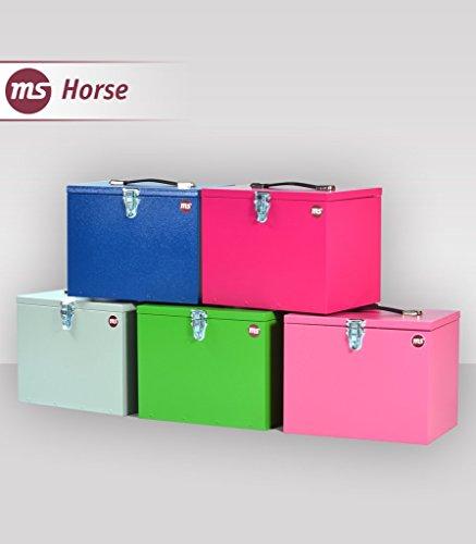 Ms Horse Putzbox Pferde, Putzbox Metall, Putzkasten Kinder, Putzkasten Reiter, Geschenk, Putzkiste, Pferd, Stall, Reiter