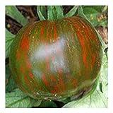 aromatische, schwarz-grün gestreifte Tomate - black Zebra - 20 Samen
