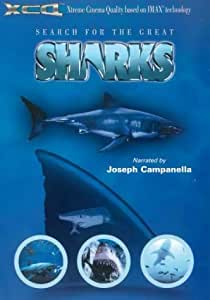 Search For The Great Sharks [DVD]