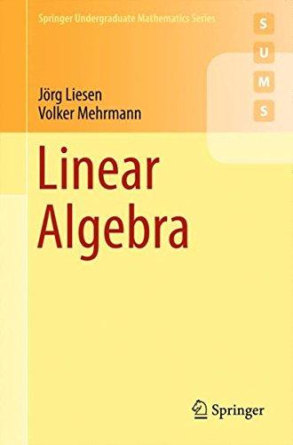 Linear Algebra par Jörg Liesen