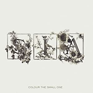 Colour the Small One [Import allemand]