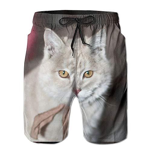 ZHIZIQIU Men's Shorts Swim Beach Trunk Summer Cat Kitten Kitty Pet Casual Classic Shorts with Pockets - XXL -