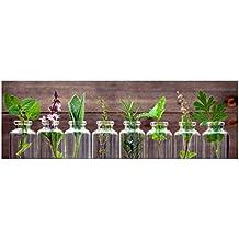 küchenbilder glas - Suchergebnis auf Amazon.de für