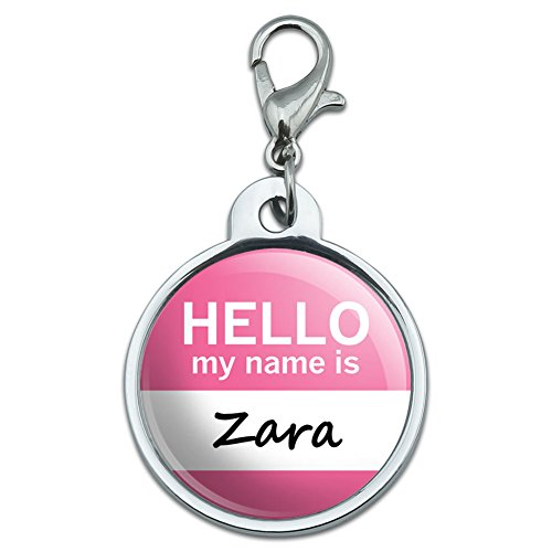 chrome-plated-metal-small-pet-id-dog-cat-tag-hello-my-name-is-yv-zo-zara