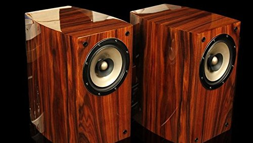 GOWE Full frecuencia sonido HIFI amplificador de válvulas–Altavoces de estantería realmente