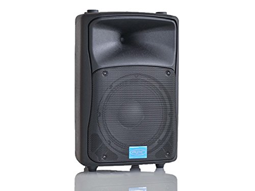 MPE - cassa attiva bi amplificata 500 watt musicali 10' 25 cm MADE IN ITALY acustica diffusore piano bar dj karaoke discoteca PA mod: DJ-10AL