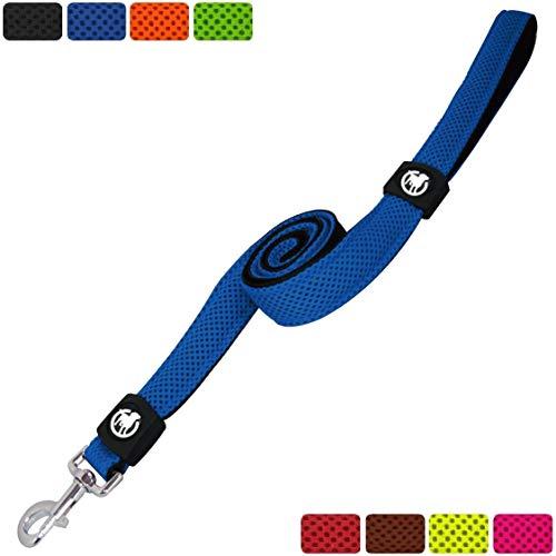DDOXX Hundeleine Air Mesh, Hand-Schlaufe, 120 cm | viele Farben & Größen | für kleine & große Hunde | Leine Hund Katze Welpe | Schlepp-Leine groß | Führ-Leine klein | Lauf-Leine | Blau, XS
