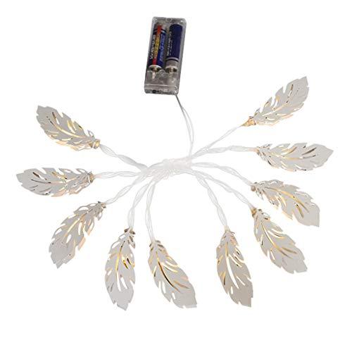 VBWER 10-LED Feather String luci a Batteria Fairy Lights for Christmas Wedding Birthday Party Giardino Camera da Letto Decorazio
