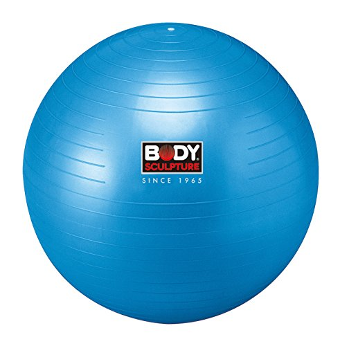 Body Sculpture Gym – Exercise Balls & Accessories