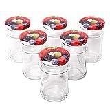 Barattoli per Conserve da 315 ml con Coperchio a Vite (Motivo Frutta), Set di 6 barattoli in Vetro per marmellate, barattoli in Vetro di Alta qualità