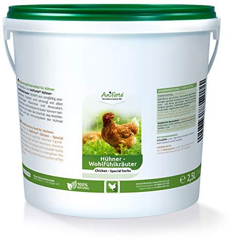 AniForte Hühner-Wohlfühlkräuter 2,5 Liter - Ausgewählter Natur Kräuter-Mix speziell für Hühner, Löwenzahn, Brennnessel, Beifuß für Immunsystem, Vitalität, Wohlbefinden, Abwehrkraft, Verdauung (Getrocknete Kräuter Mix)