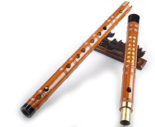 Studieren Niveau Chinesischen Bitter Bamboo Flute Dizi Instrument 2Abschnitte