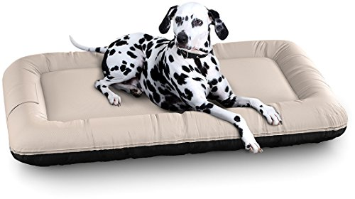 hundeinfo24.de Knuffelwuff 13057 In und Outdoor Hundebett Hundekissen Hundesofa Hundekörbchen Hundekorb, Lucky Color Edition, Größe XXL 120 x 85 cm, beige