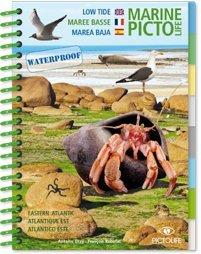 Marine Picto Life: Marée basse
