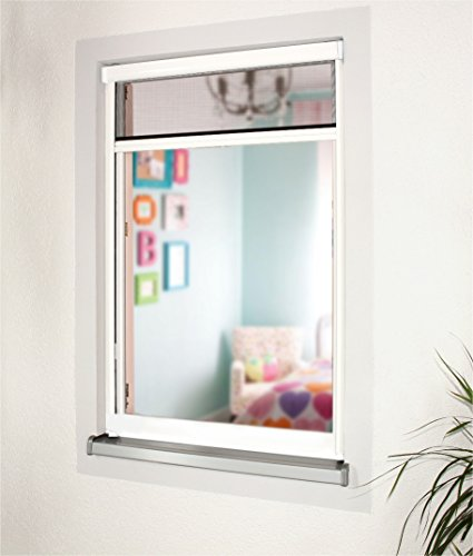 Preisvergleich Produktbild Insektenschutzrollo Schutz nach Maß für Fenster und Türen,  Rollos,  alle Größen,  Alu,  Fliegengitter (Höhe: 91-100cm x Breite: 51-60cm)