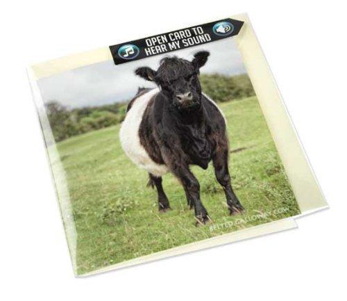Belted Galloway Kuh Grußkarte mit - Kuh Grußkarten