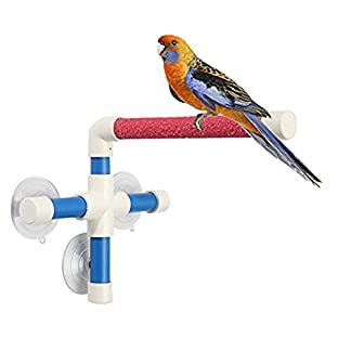 Keersi Suction Cup Shower Perch Window Wall Stand for Bird Parrot Budgie Parakeet Cockatiel Conure Lovebirds Finch… 20
