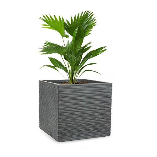 Blumfeldt luxflor vaso per piante fioriera posizionamento libero nessun foro di drenaggio dell'acqua fibra di vetro stabile per interni/esterni effetto cemento 55 x 50 x 55 cm (lxaxp) grigio scuro