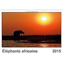 Éléphants africains (FR-Version) (Calendrier mural 2015 DIN A2 horizontal) (Calvendo Animaux)