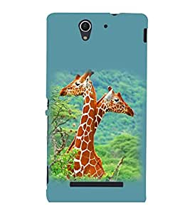 printtech Giraffe Jungle Couple Back Case Cover for Sony Xperia C3 Dual D2502::Sony Xperia C3 D2533