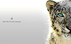 Os x snow leopard 10 6 full install or upgrade bootable 8gb usb stick