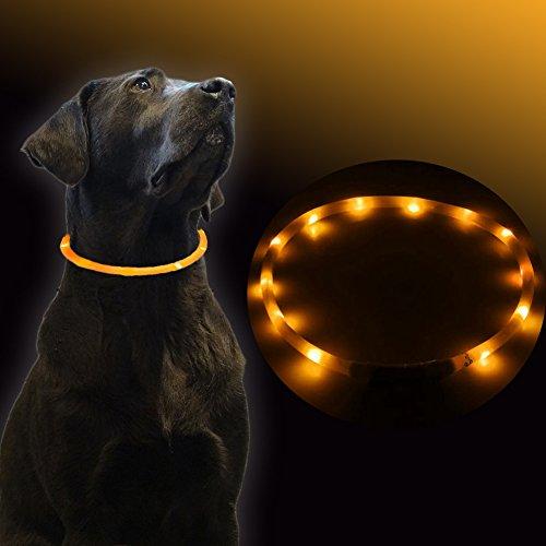 UC-Express Hundehalsband LED Orange Leuchthalsband Hunde Sicherheitshalsband Leuchtschlauch