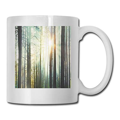 Jolly2T Funny Ceramic Novelty Coffee Mug 11oz,Mist in The Enchanted Forest with Sunbeams Painting Effect Digital Art Image,Unisex Who Tea Mugs Coffee Cups,Suitable for Office And Home